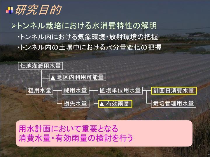 畑地灌漑用水量