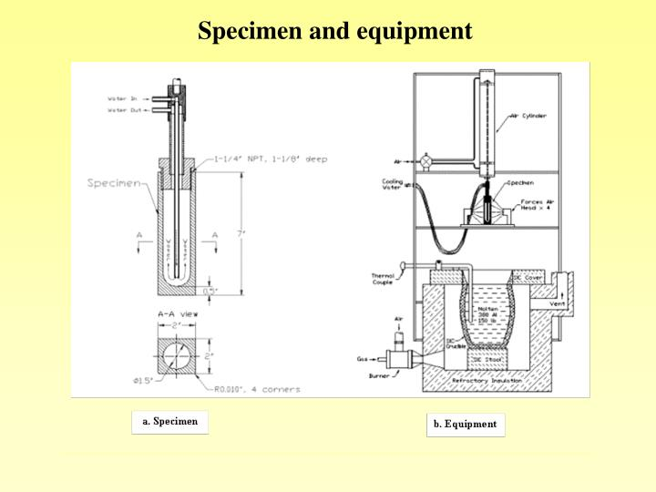 Specimen and equipment