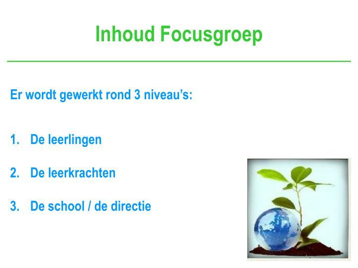 Inhoud Focusgroep