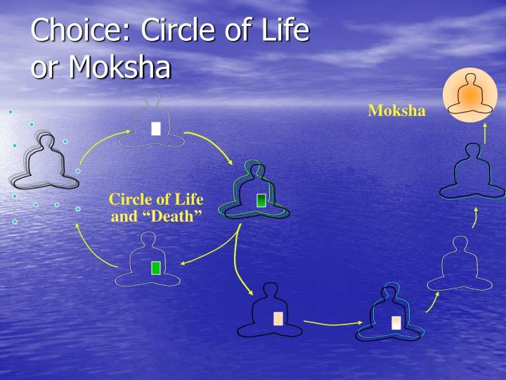 Choice: Circle of Life