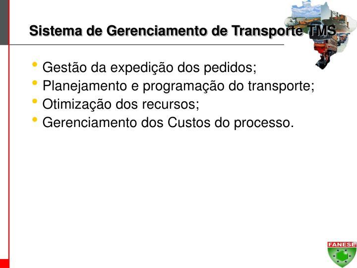 Sistema de Gerenciamento de Transporte TMS
