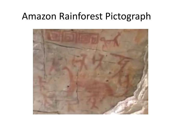 Amazon Rainforest Pictograph