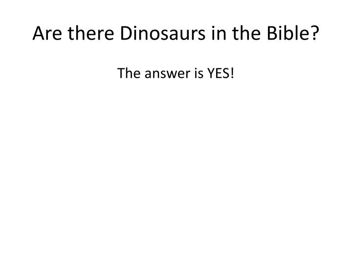 Are there Dinosaurs in the Bible?