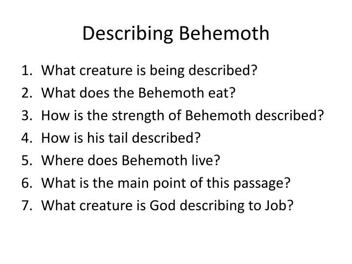 Describing Behemoth