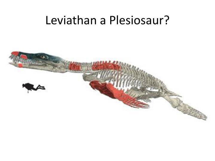 Leviathan a Plesiosaur?