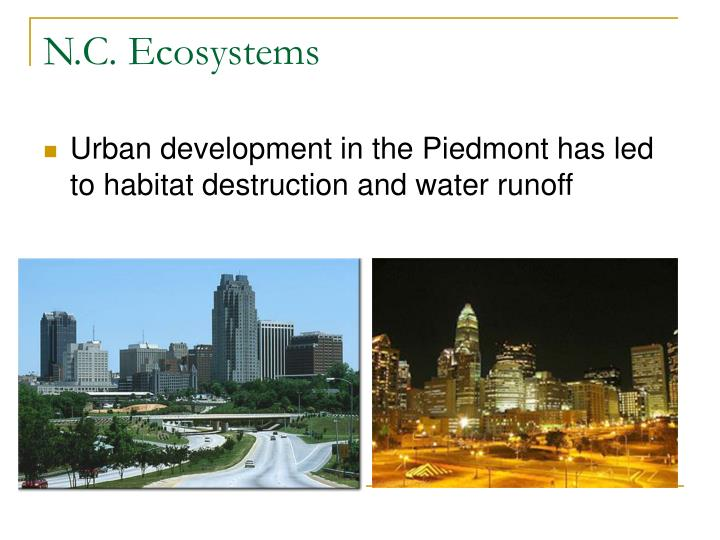 N.C. Ecosystems