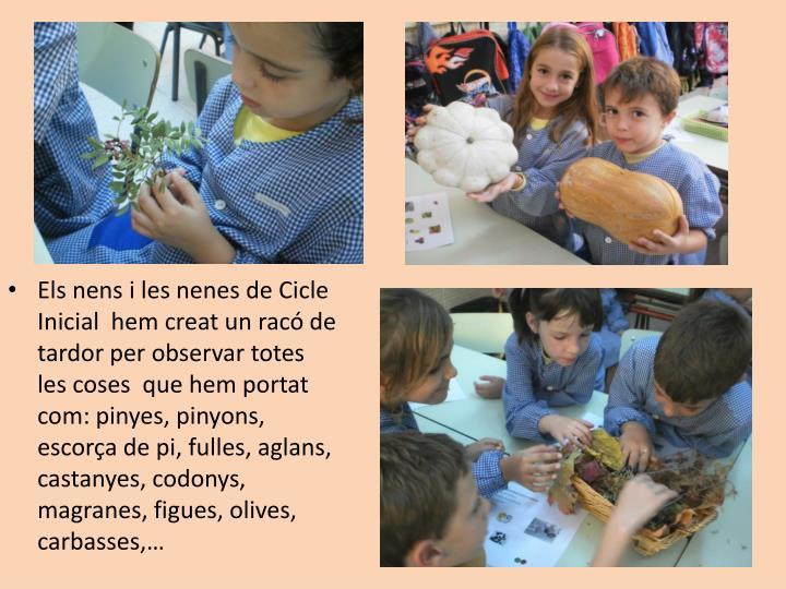 Els nens i les nenes de Cicle Inicial  hem creat un racó de tardor per observar totes les coses  que hem portat com: pinyes, pinyons, escorça de pi, fulles, aglans, castanyes, codonys, magranes, figues, olives, carbasses,…