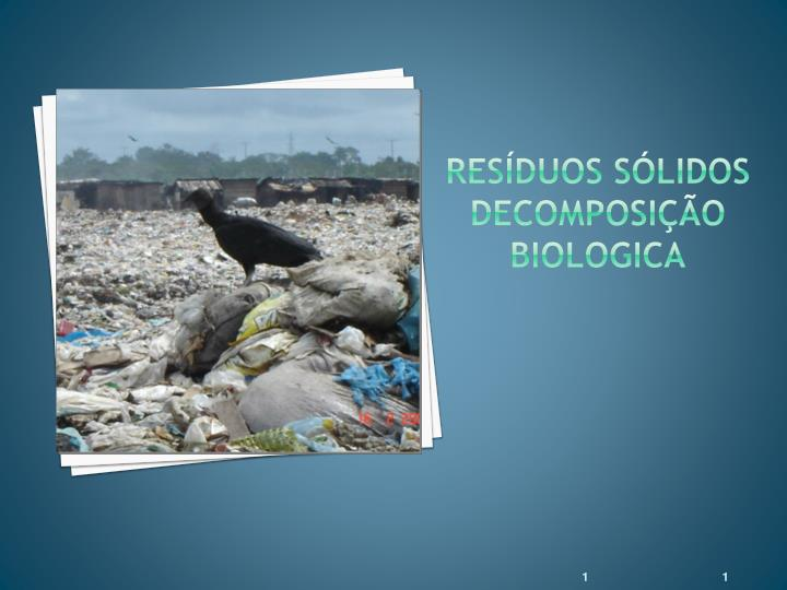 Res duos s lidos decomposi o biologica