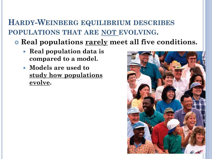 Hardy-Weinberg equilibrium describes populations that are