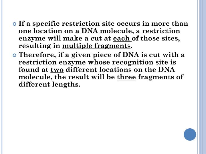 If a specific restriction site occurs in more than one location on a DNA molecule, a restriction enzyme will make a cut at