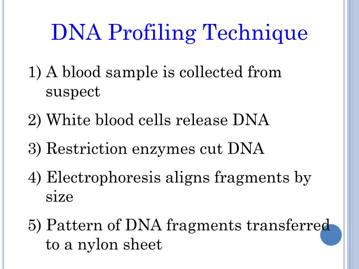 DNA Profiling Technique