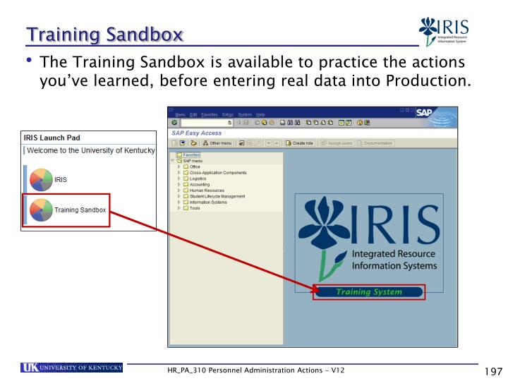 Training Sandbox