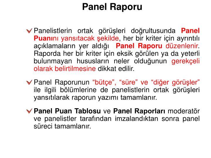 Panel Raporu