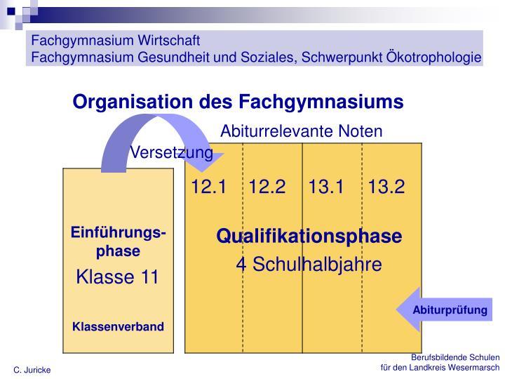 Organisation des Fachgymnasiums