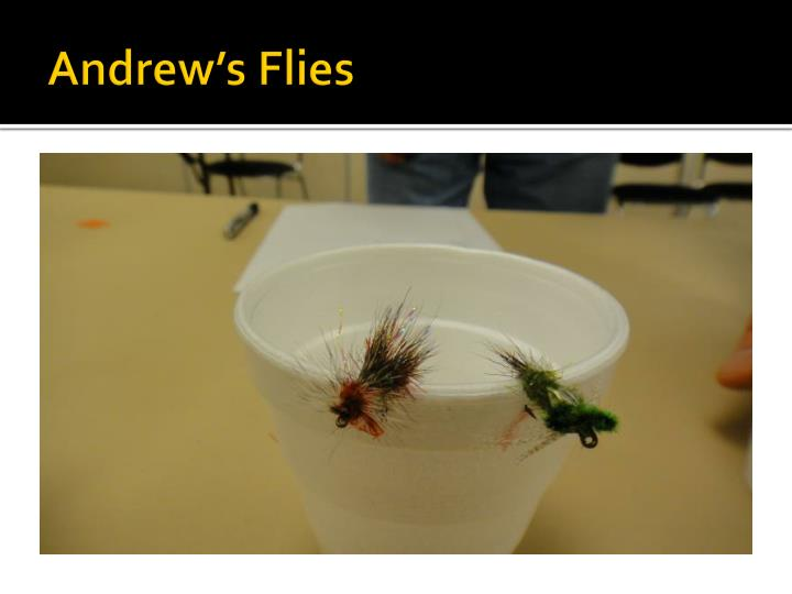 Andrew's Flies