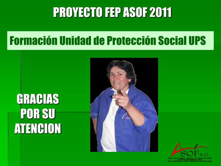 PROYECTO FEP ASOF 2011