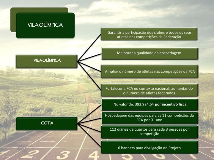 Garantir a participação dos clubes e todos os seus atletas nas competições da Federação