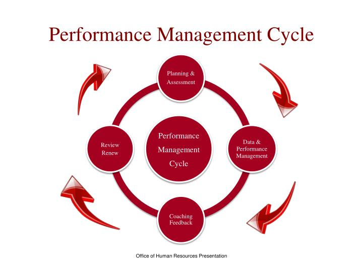 the performance management cycle The performance management cycle (see below) shows the stages involved in the process of planning, monitoring and evaluating employee performance.