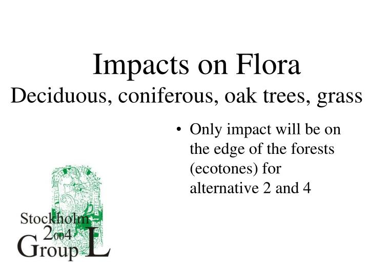 Impacts on Flora