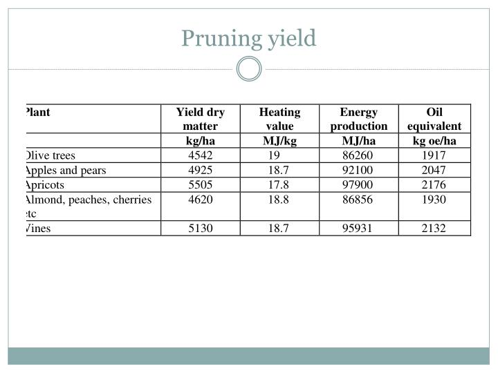 Pruning yield