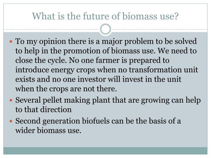 What is the future of biomass use?