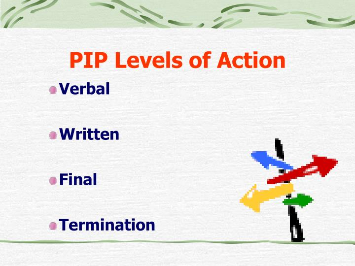 PIP Levels of Action