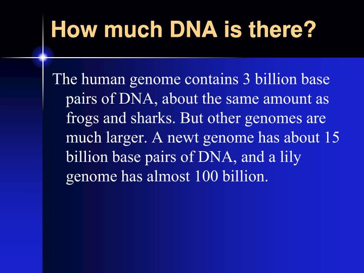 How much DNA is there?