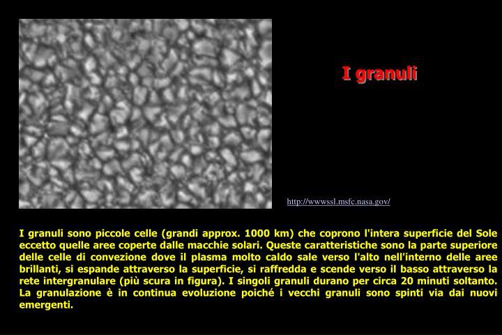 I granuli
