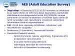 aes adult education survey