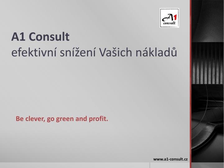 A1 Consult