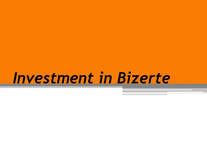Investment in bizerte