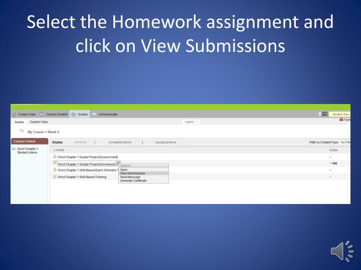 Select the Homework assignment and click on View Submissions
