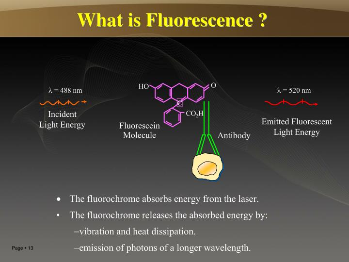 What is Fluorescence ?