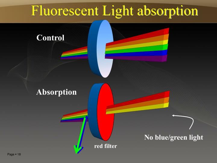 Fluorescent Light absorption