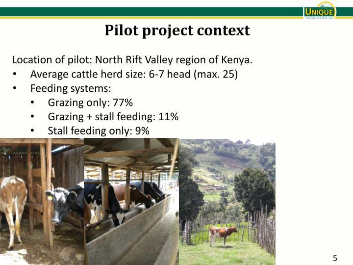 Pilot project context