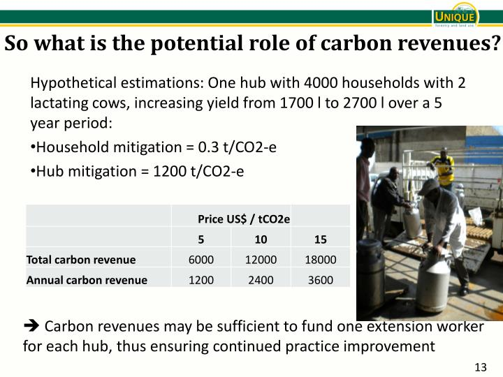 So what is the potential role of carbon revenues?