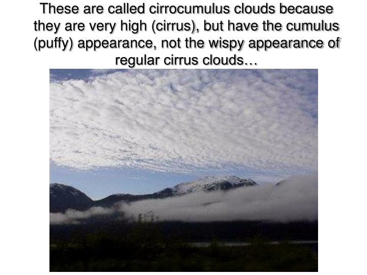 These are called cirrocumulus clouds because they are very high (cirrus), but have the cumulus (puffy) appearance, not the wispy appearance of regular cirrus clouds…