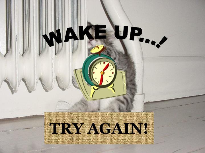 WAKE UP...!