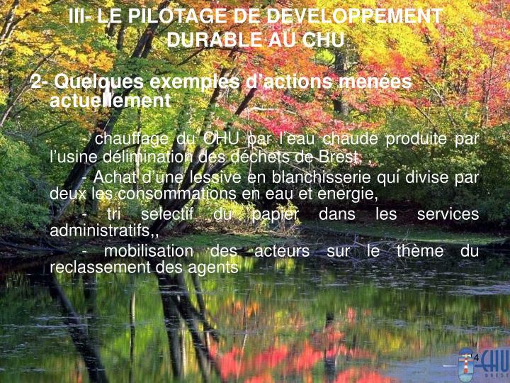 III- LE PILOTAGE DE DEVELOPPEMENT DURABLE AU CHU