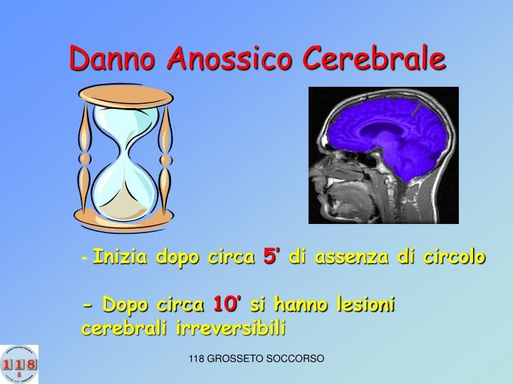 Danno Anossico Cerebrale