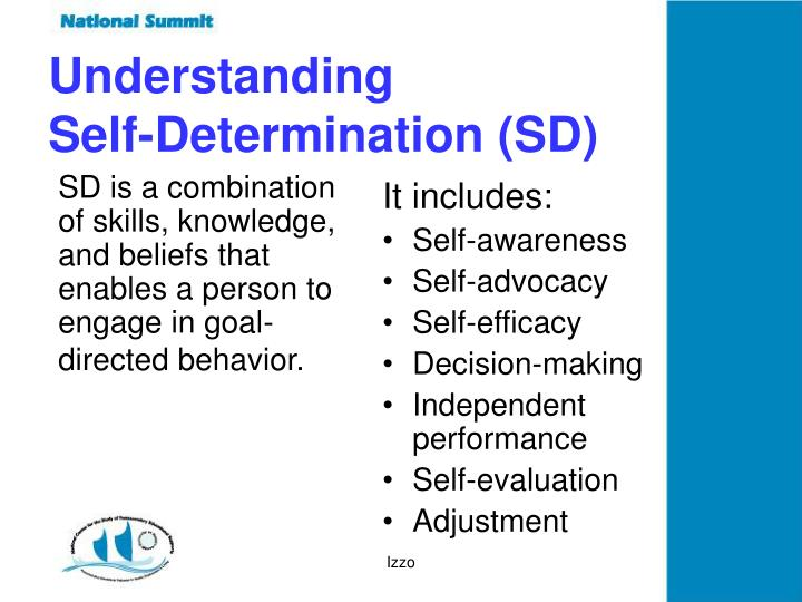 SD is a combination of skills, knowledge, and beliefs that enables a person to engage in goal-directed behavior.