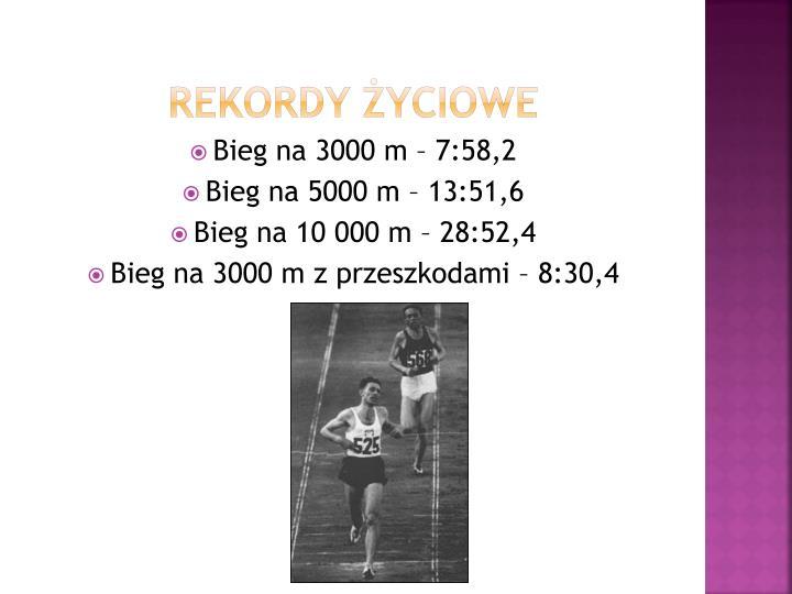 Rekordy