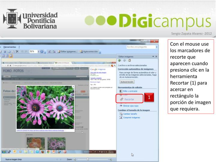 Con el mouse use los marcadores de recorte que aparecen cuando presiona clic en la herramienta Recortar (1) para  acercar en rectángulo la porción de imagen que requiera.