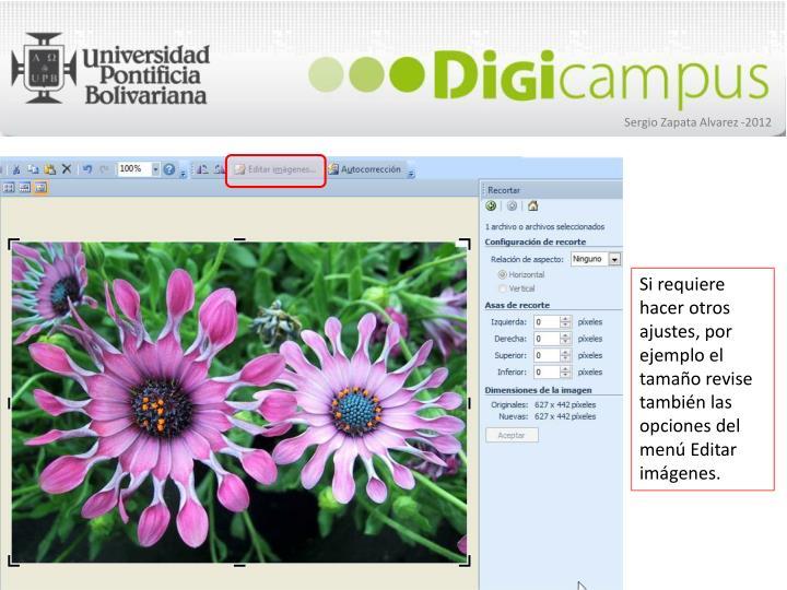 Si requiere hacer otros ajustes, por ejemplo el tamaño revise también las opciones del menú Editar imágenes.