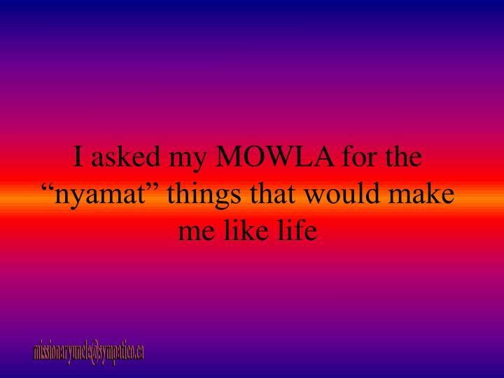 "I asked my MOWLA for the ""nyamat"" things that would make me like life"