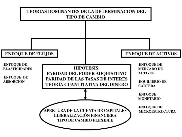 TEORÍAS DOMINANTES DE LA DETERMINACIÓN DEL