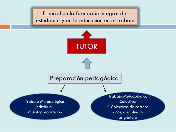 Esencial en la formación integral del estudiante y en la educación en el trabajo