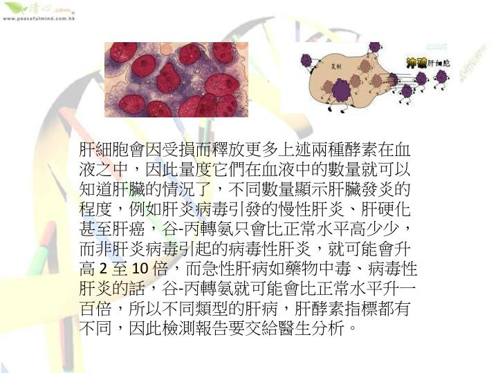 肝細胞會因受損而釋放更多上述兩種酵素在血液之中,因此量度它們在血液中的數量就可以知道肝臟的情況了,不同數量顯示肝臟發炎的程度,例如肝炎病毒引發的慢性肝炎、肝硬化甚至肝癌,谷