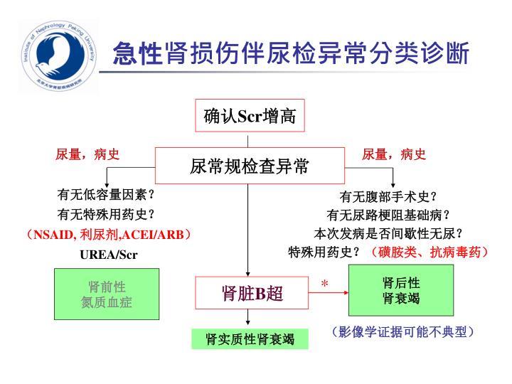 急性肾损伤伴尿检异常分类诊断