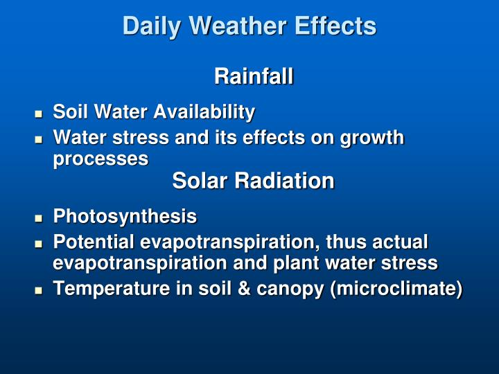 Daily Weather Effects